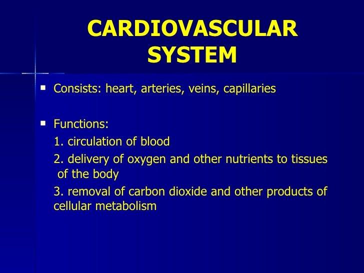 4   Cardiovascular Slide 2