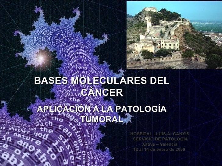 HOSPITAL LLUÍS ALCANYÍS SERVICIO DE PATOLOGÍA Xàtiva – Valencia 12 al 14 de enero de 2009  BASES MOLECULARES DEL CÁNCER AP...