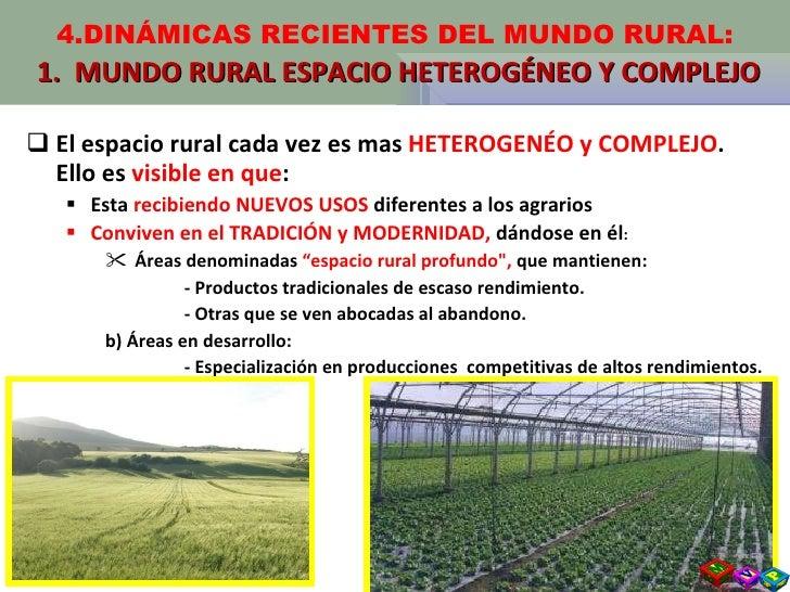<ul><li>El espacio rural cada vez es mas  HETEROGENÉO y COMPLEJO . Ello es  visible en que : </li></ul><ul><ul><li>Esta  r...
