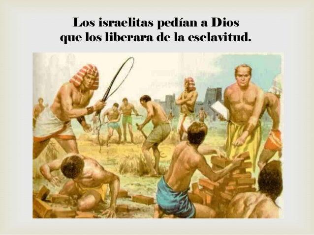 NAM esclavo