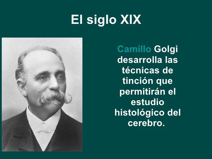 El siglo XIX <ul><li>Camillo  Golgi  desarrolla las técnicas de tinción que permitirán el estudio histológico del cerebro....