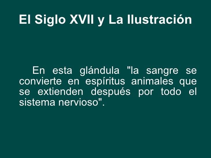 El Siglo XVII y La Ilustración <ul><li>En esta glándula &quot;la sangre se convierte en espíritus animales que se extiende...