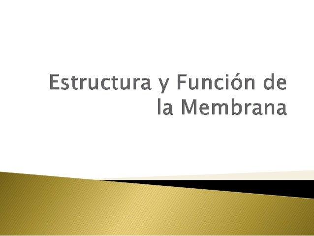 4. estructura y función de la membrana