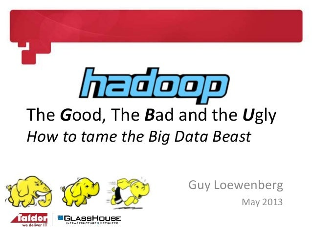 The Good, The Bad and the UglyHow to tame the Big Data BeastGuy LoewenbergMay 2013