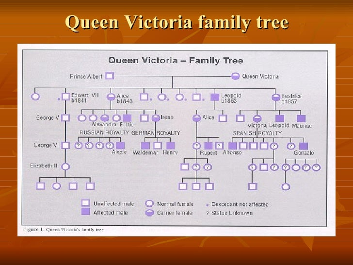 4. Haemophilia And Royal Families