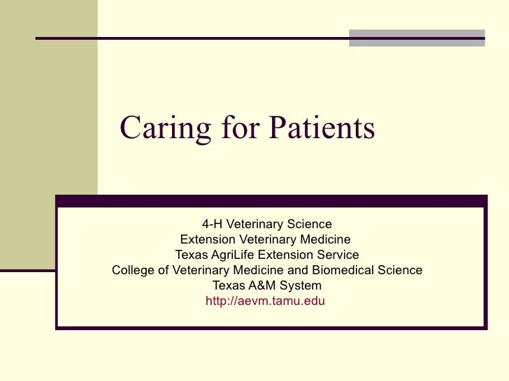 Caring for Patients 4-H Veterinary Science Extension Veterinary Medicine  Texas AgriLife Extension Service College of Vete...