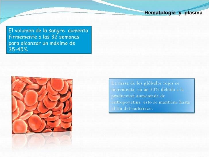 El volumen de la sangre  aumenta firmemente a las 32 semanas para alcanzar un máximo de 35-45%  Hematología  y  plasma La ...