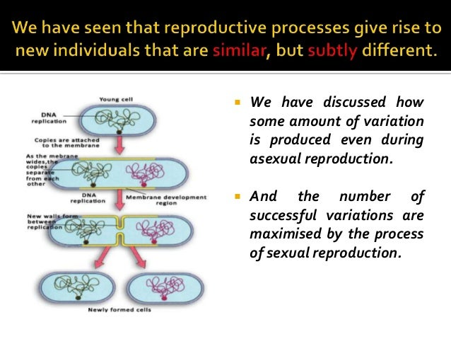 4. heredity and evolution Slide 2