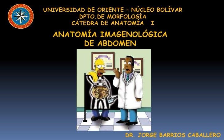 UNIVERSIDAD DE ORIENTE – NÚCLEO BOLÍVAR          DPTO.DE MORFOLOGÍA        CÁTEDRA DE ANATOMÍA I  ANATOMÍA IMAGENOLÓGICA  ...