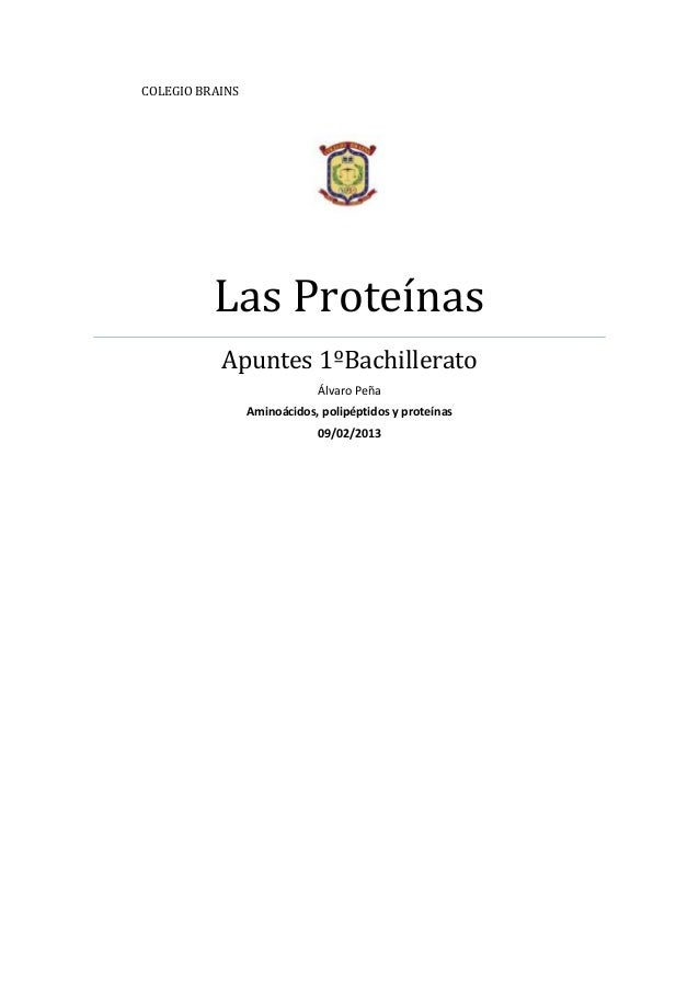 COLEGIO BRAINS          Las Proteínas           Apuntes 1ºBachillerato                             Álvaro Peña            ...