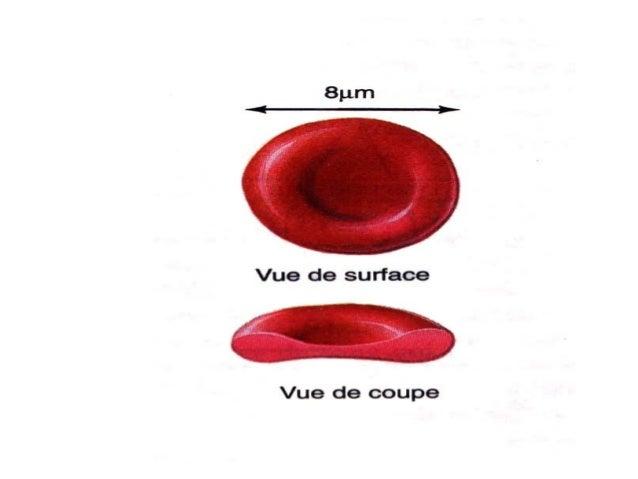 4 les éléments figurés du sang