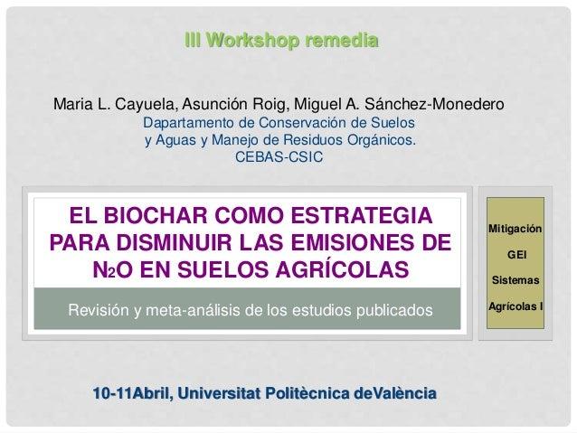 EL BIOCHAR COMO ESTRATEGIA PARA DISMINUIR LAS EMISIONES DE N2O EN SUELOS AGRÍCOLAS Maria L. Cayuela, Asunción Roig, Miguel...