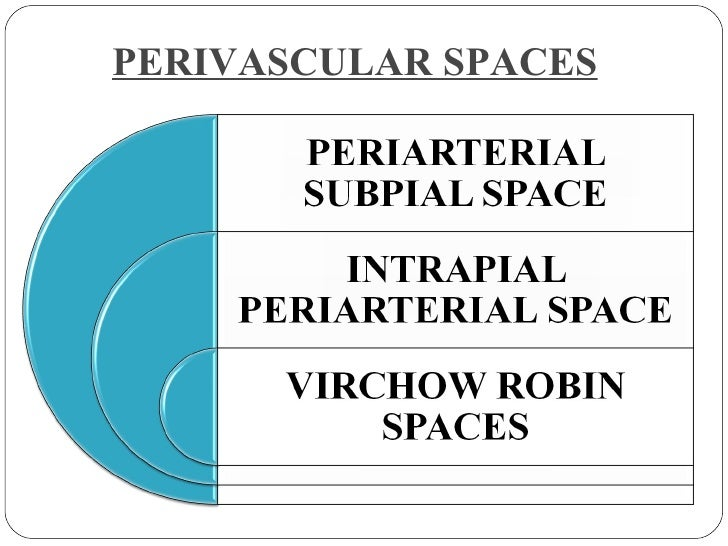 PERIVASCULAR SPACES