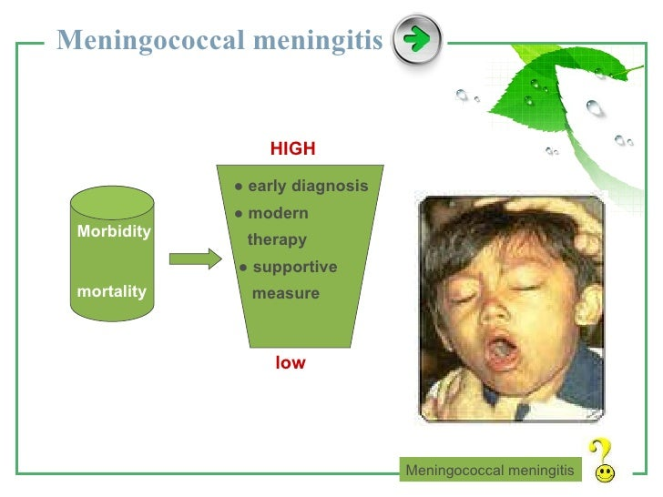 Image Result For Meningococcal