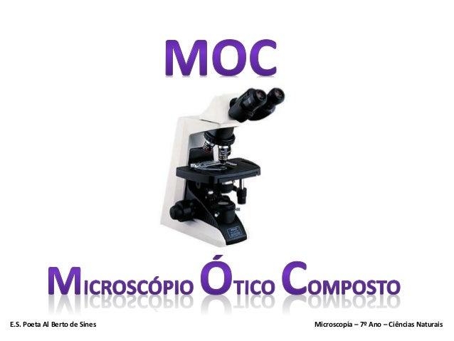 E.S. Poeta Al Berto de Sines Microscopia – 7º Ano – Ciências Naturais