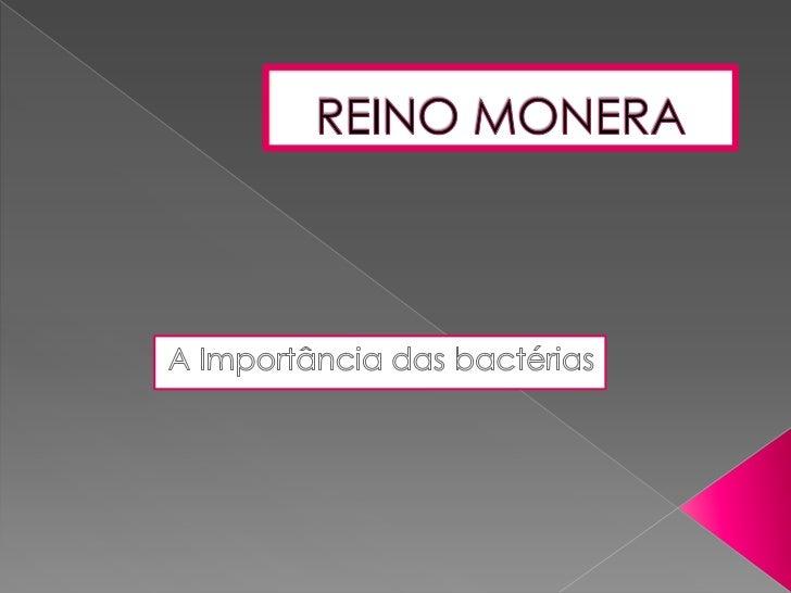 As bactérias também têm sua importância no meioambiente, assim como qualquer ser vivo.-Decomposição: actuam na reciclagem ...
