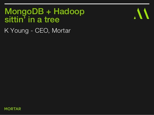 K Young - CEO, MortarMongoDB + Hadoopsittin' in a tree