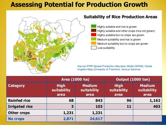 Assessing Potential for Production Growth Suitability of Rice Production Areas Highly suitable and rice is grown Highly su...