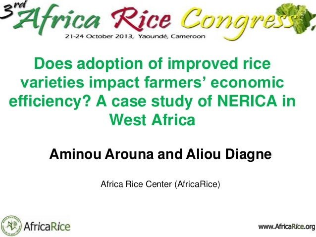 Does adoption of improved rice varieties impact farmers' economic efficiency? A case study of NERICA in West Africa Aminou...