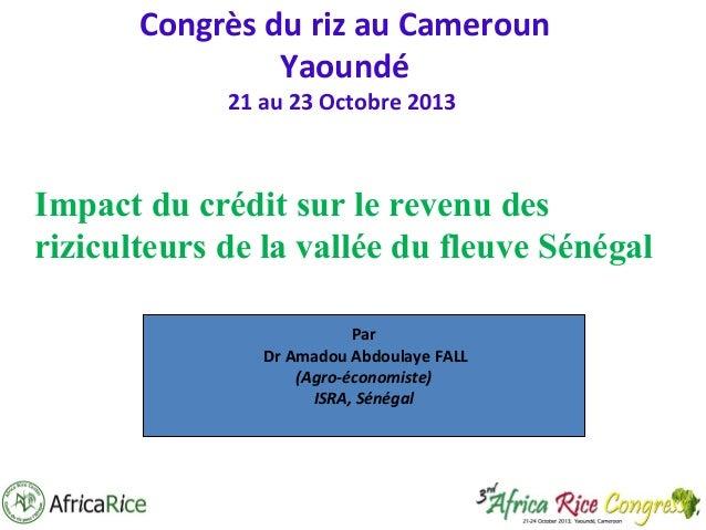 Congrès du riz au Cameroun Yaoundé 21 au 23 Octobre 2013  Impact du crédit sur le revenu des riziculteurs de la vallée du ...