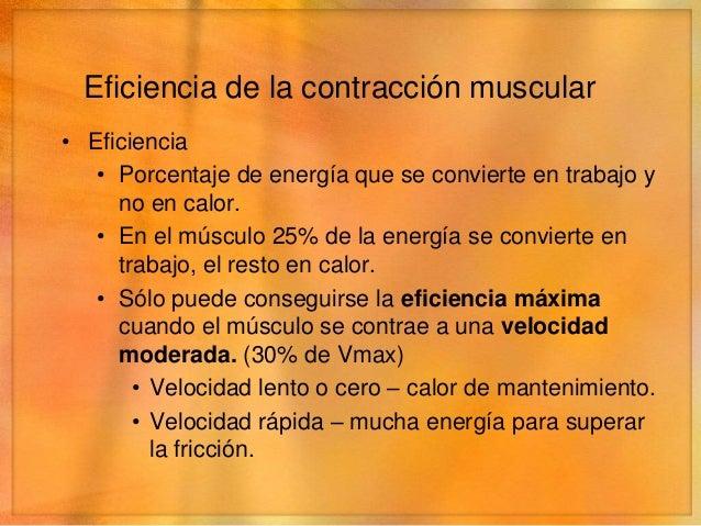 Características de la contracción• Contracción isométrica   • El músculo no se acorta durante la contracción.• Contracción...