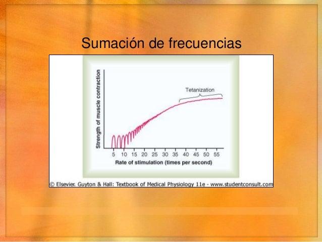 Mecánica de la contracción• Tono muscular  • Incluso en reposo hay tensión, por impulsos de baja    frecuencia procedentes...