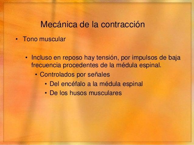 Mecánica de la contracción• Fatiga muscular• Secundaria a contracción prolongada e intensa• Aumenta en proporción casi dir...