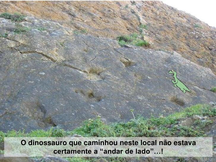 """O dinossauro que caminhou neste local não estava         certamente a """"andar de lado""""…!"""