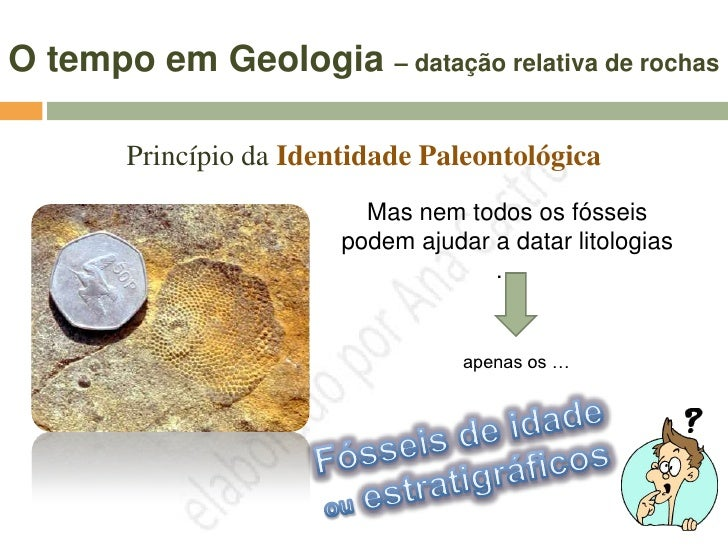 O tempo em Geologia – datação relativa de rochas              Princípio da Identidade Paleontológica    As amonites eram a...