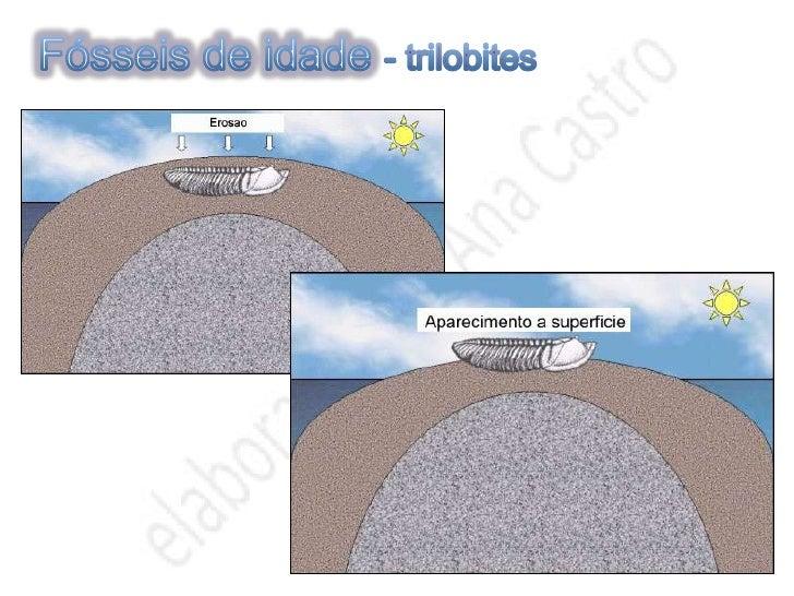 Mais informações sobre FÓSSEIS                      Permitem caracterizar                     paleoambientes        São ...