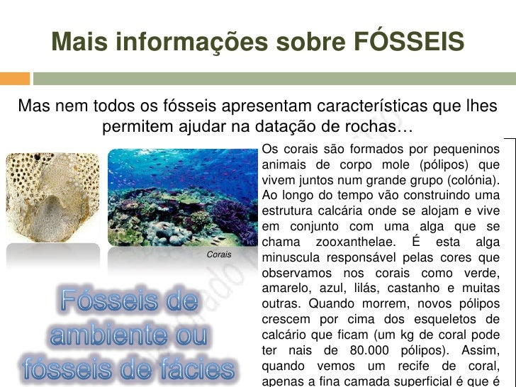 http://www.classzone.com/books/earth_science/terc/conten          t/investigations/es2903/es2903page03.cfm