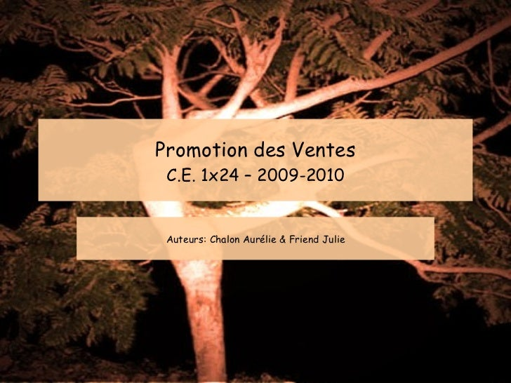 Promotion des Ventes C.E. 1x24 – 2009-2010 Auteurs: Chalon Aurélie & Friend Julie