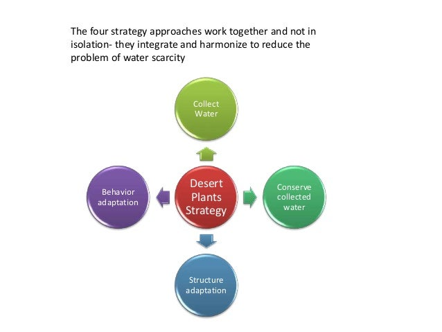 The four strategy approaches work together and not in isolation- they integrate and harmonize to reduce the problem of wat...