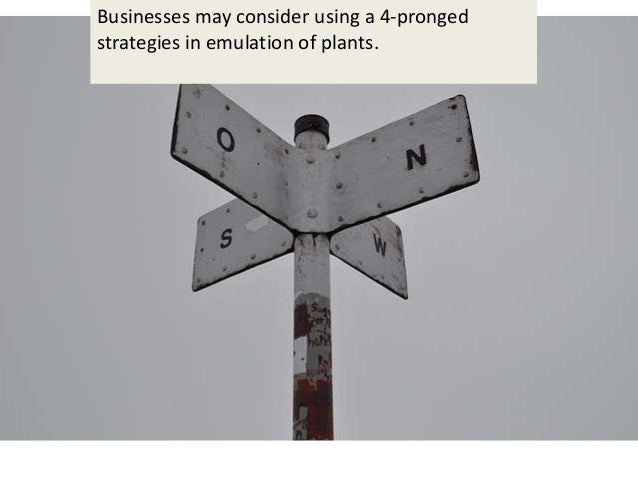 Businesses may consider using a 4-pronged strategies in emulation of plants.