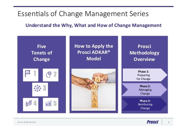 ist7060 project and change management final Organizational change 1 running head: dennis winston wilmington university ist7060project and change management professor debra as the change begins to take effect, there are several steps in the process to achieve the final.