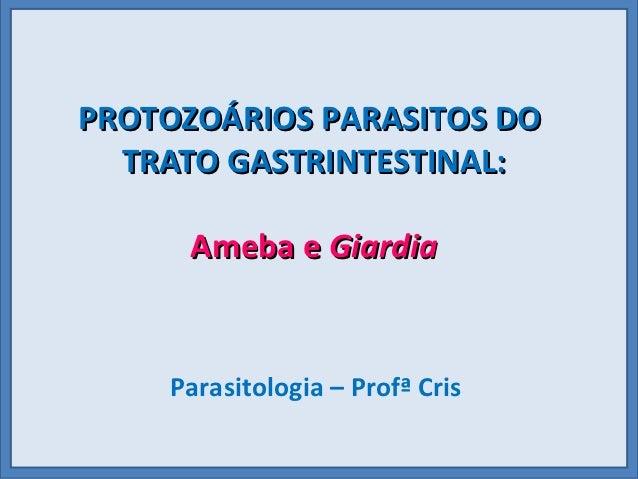 PROTOZOÁRIOS PARASITOS DO  TRATO GASTRINTESTINAL:      Ameba e Giardia    Parasitologia – Profª Cris