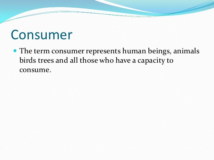 4. service consumer behavior Slide 3