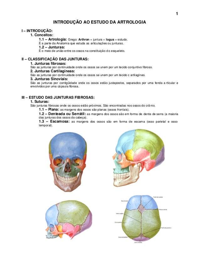 1                     INTRODUÇÃO AO ESTUDO DA ARTROLOGIAI – INTRODUÇÃO:      1. Conceitos:           1.1 – Artrologia: Gre...