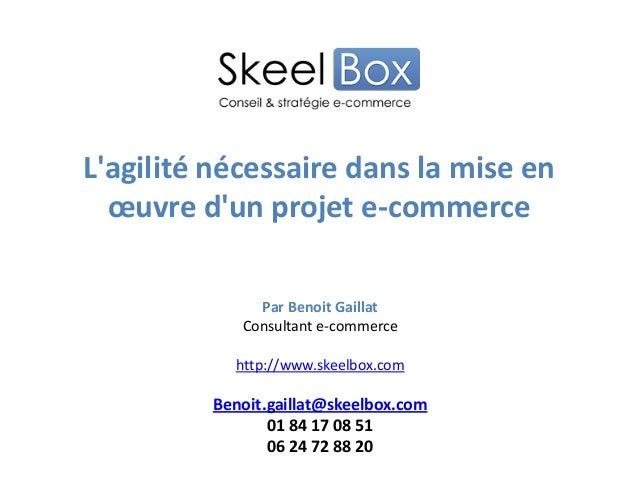 Lagilité nécessaire dans la mise enœuvre dun projet e-commercePar Benoit GaillatConsultant e-commercehttp://www.skeelbox.c...