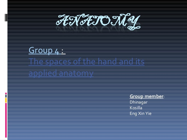 Group 4  :  The spaces of the hand and its applied anatomy Group member : Dhinagar Kosilla Eng Xin Yie