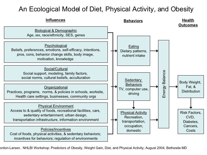 physical activity and nutrition interventions: conceptualization and design essay Programs can effectively promote physical activity, healthy eating, and  design,  and relevant fields of application (eg, nutrition, physical activity) to develop   conceptualizing and planning pathway environments that focus on connecting.