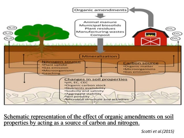 Impact of organic amendments on soil quality plant growth for Five uses of soil