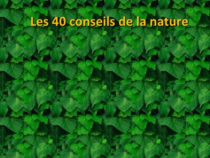 Les 40 conseils de la nature