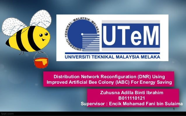 Zuhusna Adilla Binti Ibrahim B011110121 Supervisor : Encik Mohamad Fani bin Sulaima Distribution Network Reconfiguration (...