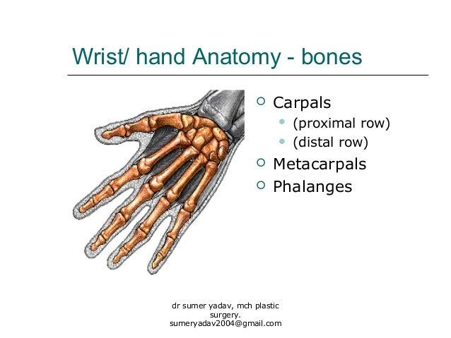 fractures of hand bones