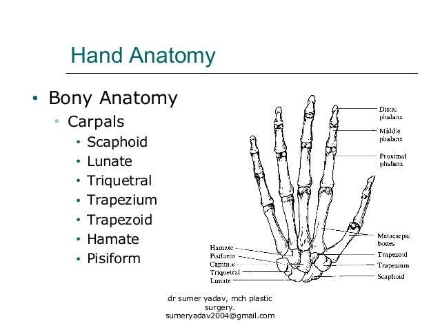 fractures of hand bones, Cephalic Vein