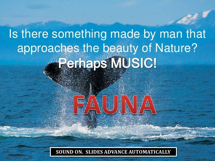Is there something made by man that approaches the beauty of Nature? <br />Perhaps MUSIC!<br />FAUNA<br />FAUNA<br />SOUND...