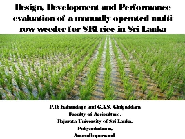 Design, Development and Performance  evaluation of a manually operated multi  row weeder for SRI rice in Sri Lanka  P.D. K...