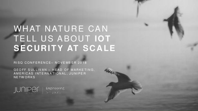 WHAT NATURE CAN TELL US ABOUT IOT SECURITY AT SCALE R I S Q C O N F E R E N C E – N O V E M B E R 2 0 1 8 G E O F F S U L ...