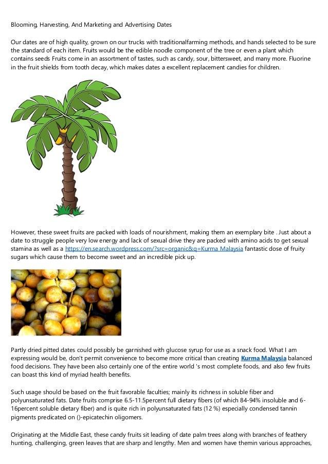 SHARP-Q Palm Trees